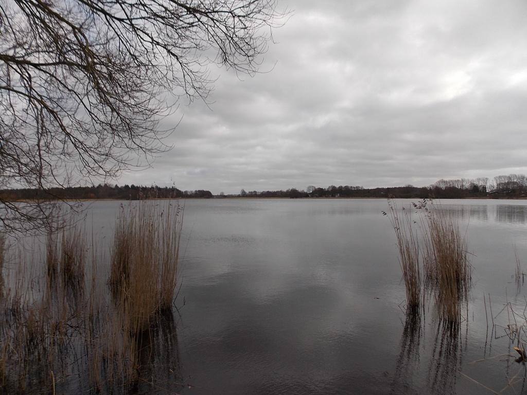 Fockbeker See