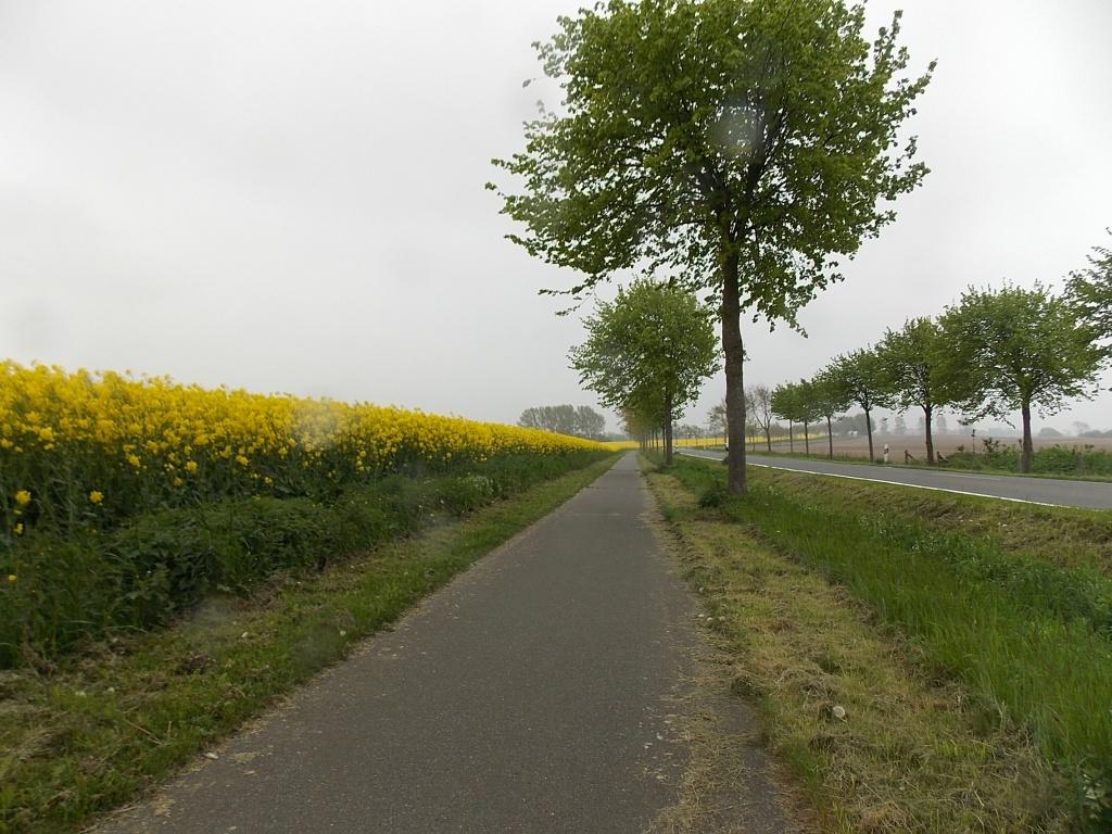 Marienthal Radweg