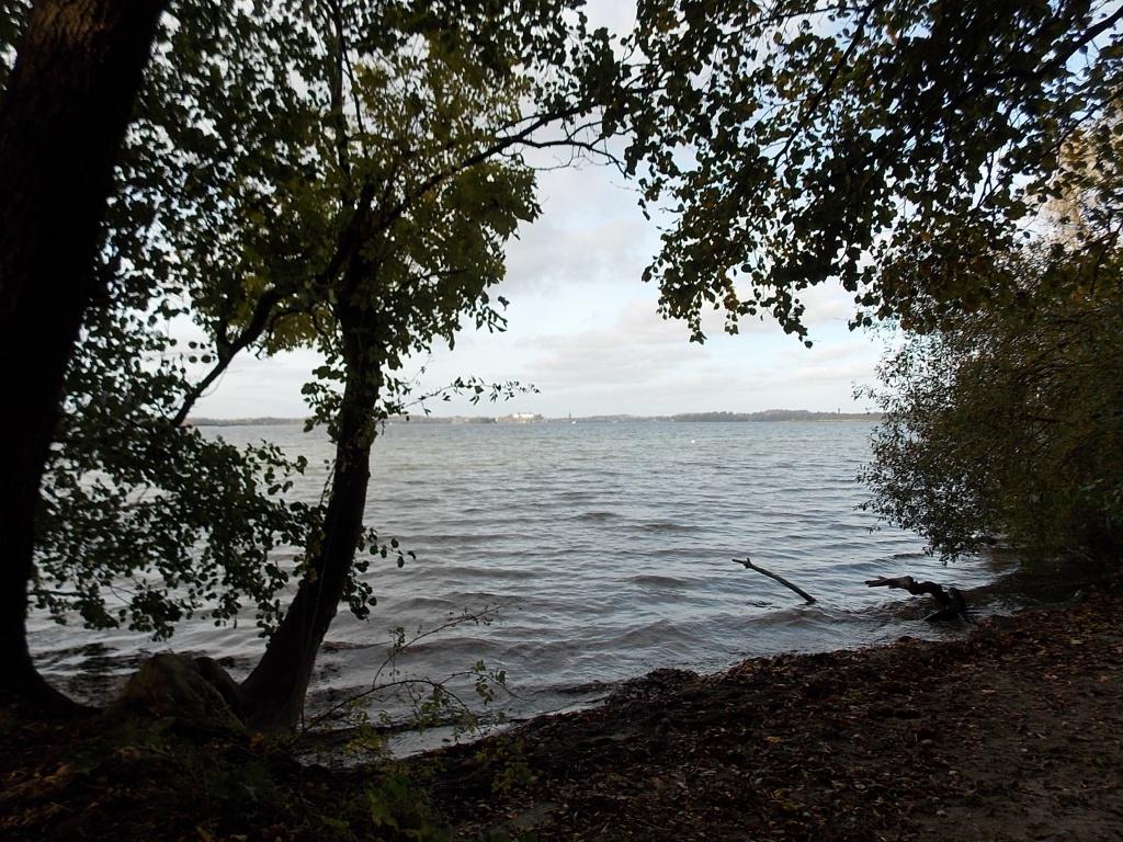 Großer Plöner See Plön hinten