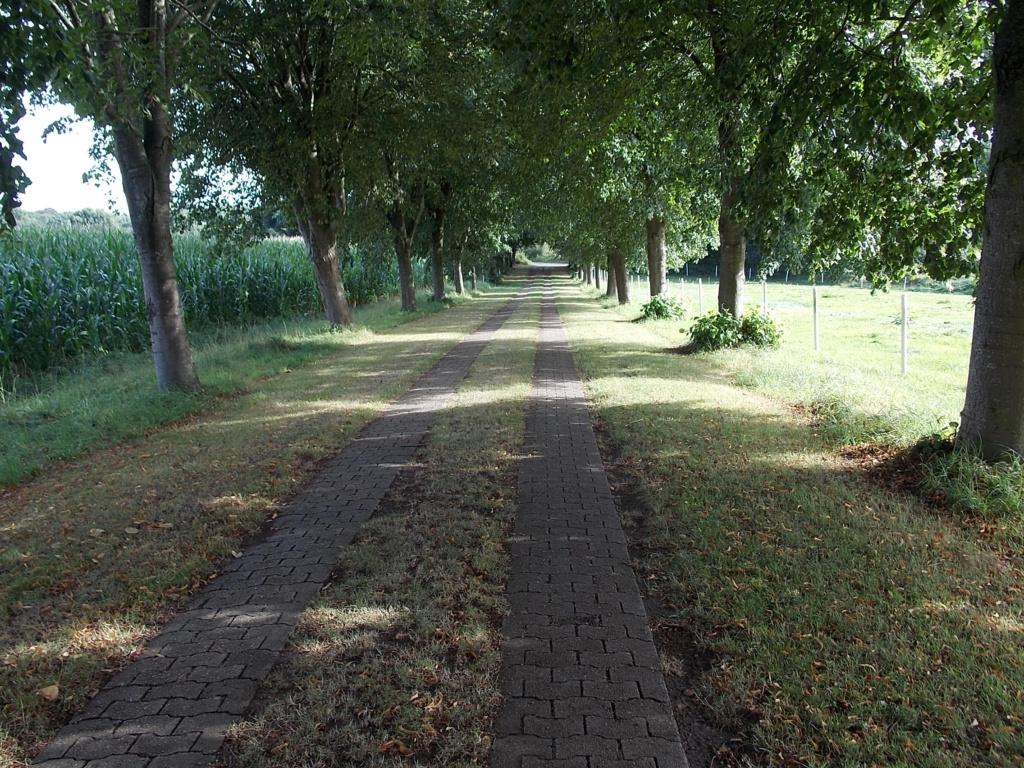 Jakobsweg via Jutlandica Camino de Santiago