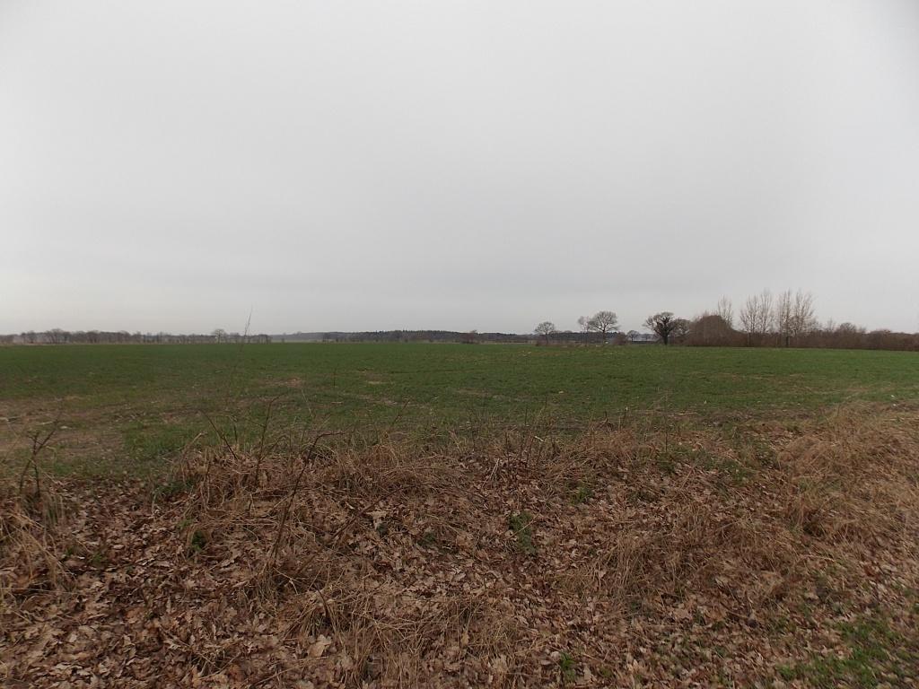 Westerrönfeld Lagenweg