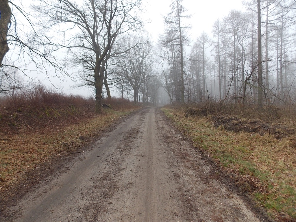 Alter Heerweg