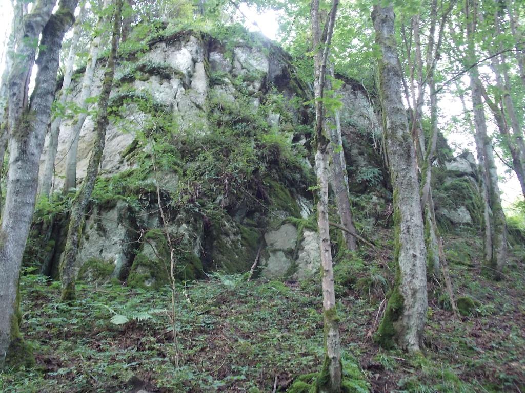 Steinbach - Hirschbach