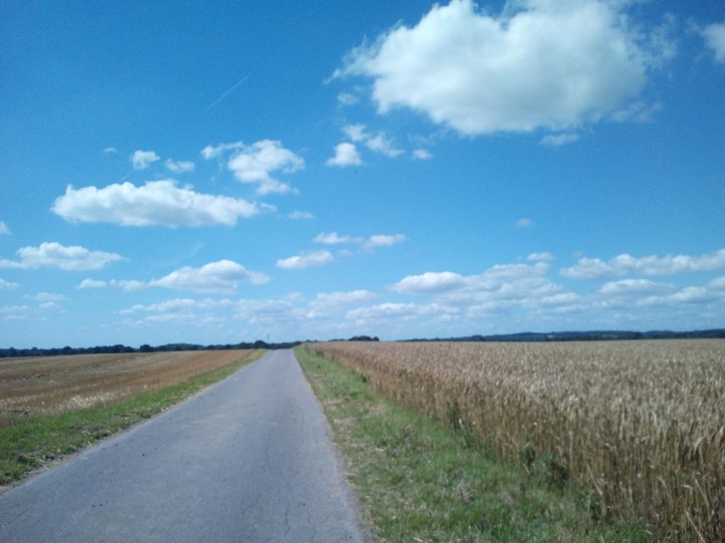 Springhorst
