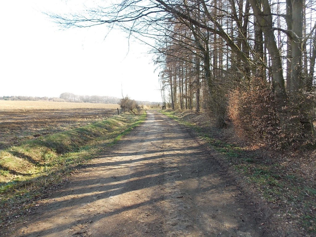 Tappendorf Sandweg