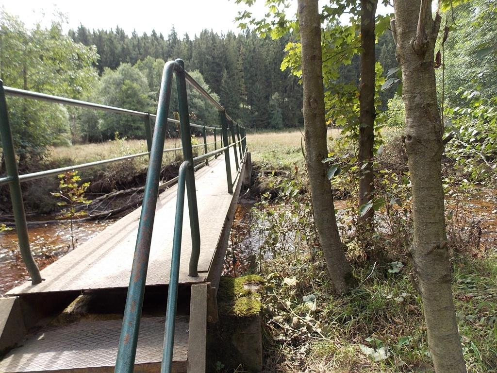 Brücke über Bode