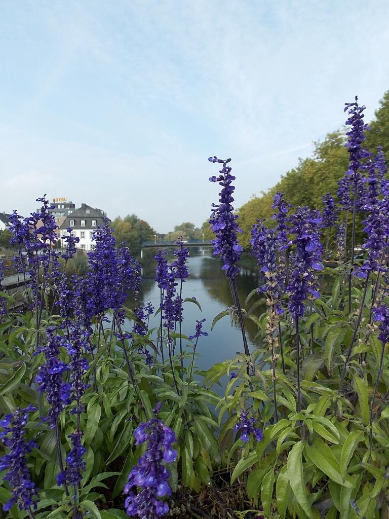 Rheine und die Ems