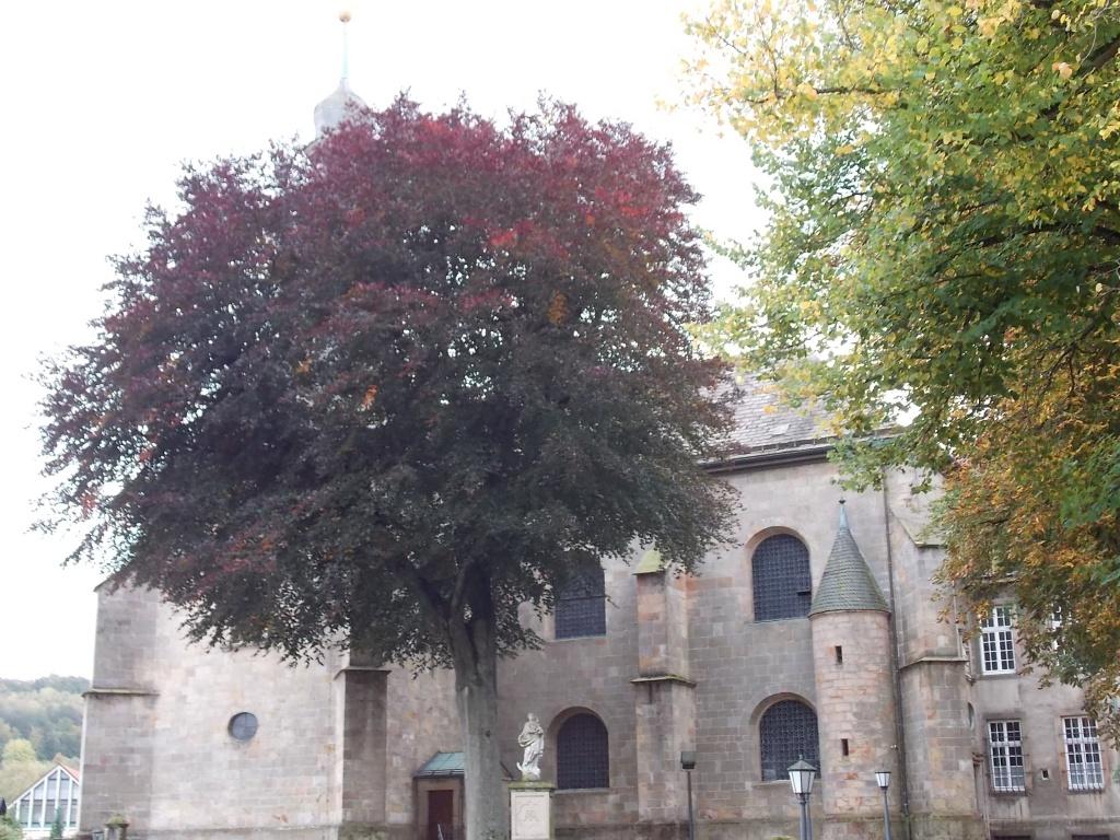 Willebadessen Kirche St. Vitus