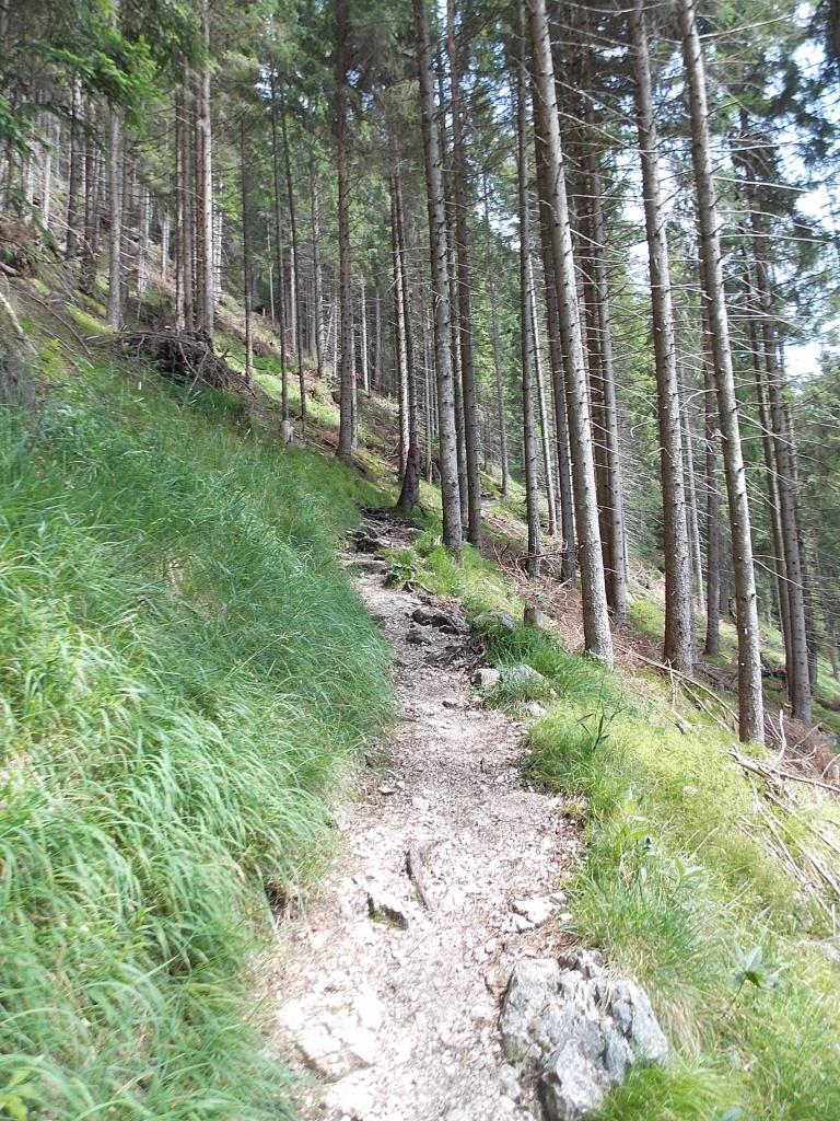 Lechweg 14