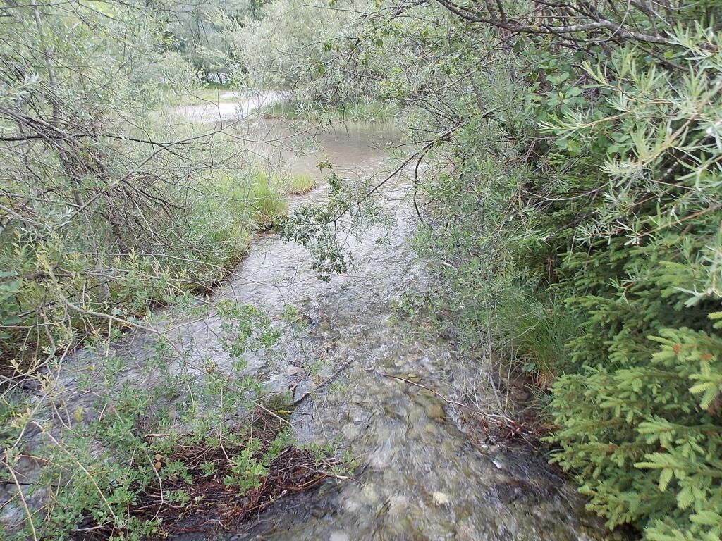 Bach vom Riedener See Lechweg 13