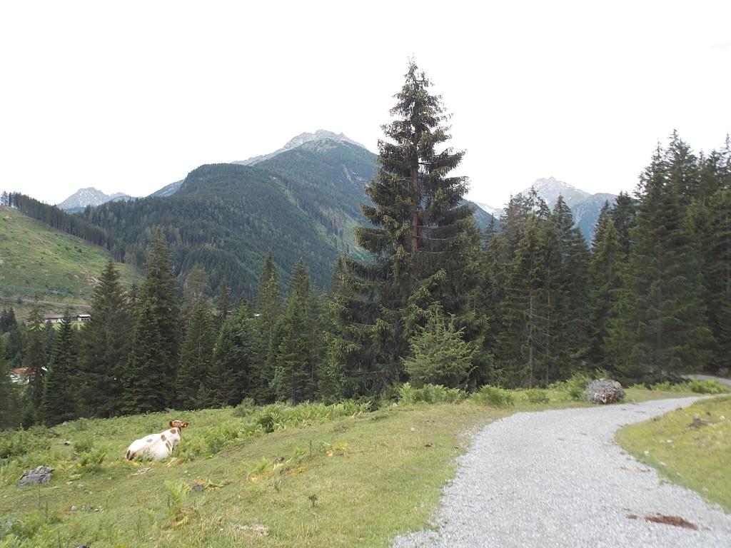 Lechweg 8