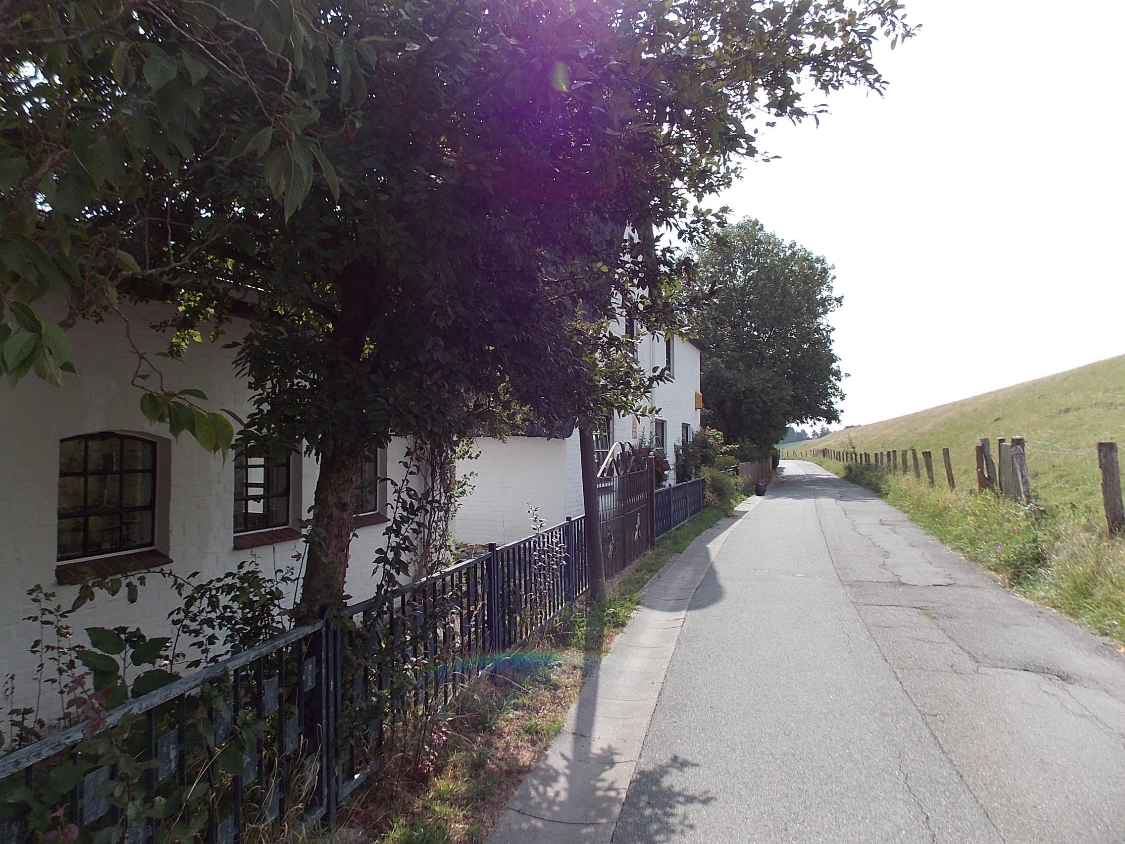 Herrenfeld