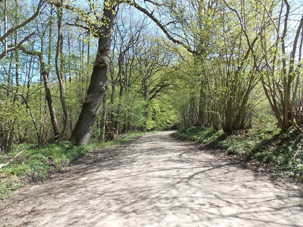Weg Bauersdorf - Rantzau
