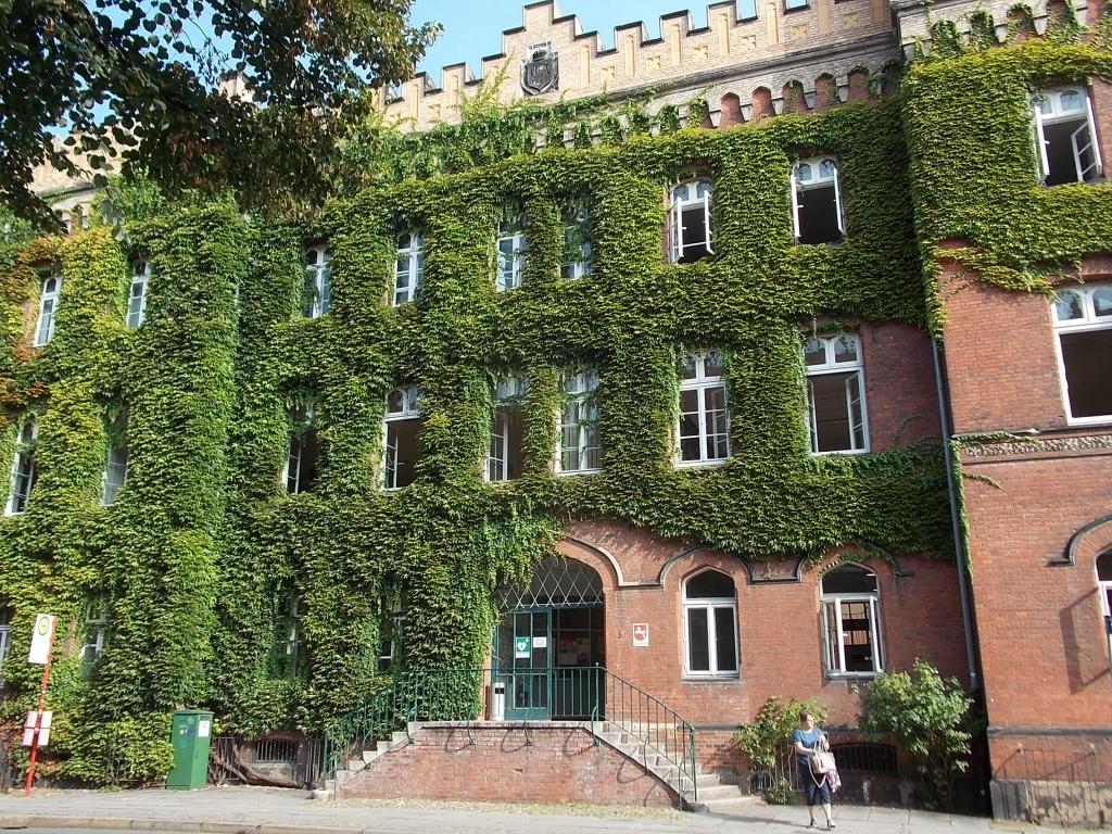 Lüneburg Amtsgericht