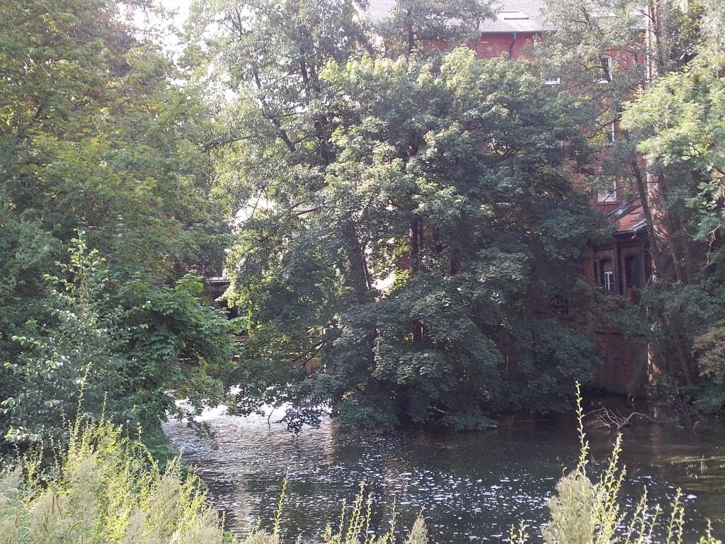 Lüneburg Ratsmühle