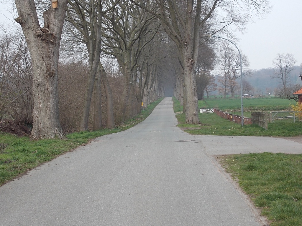 Salem Dorotheenhofer Weg