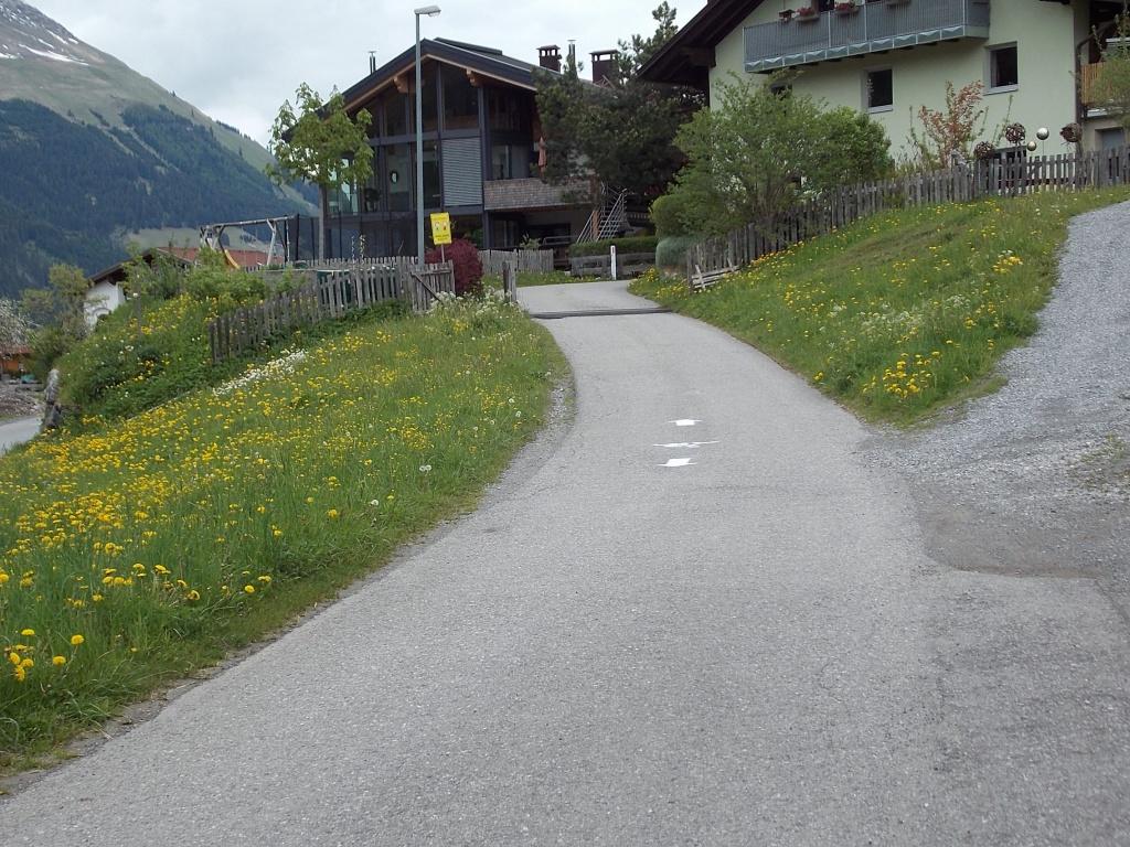 Lech Radweg Obergrünau