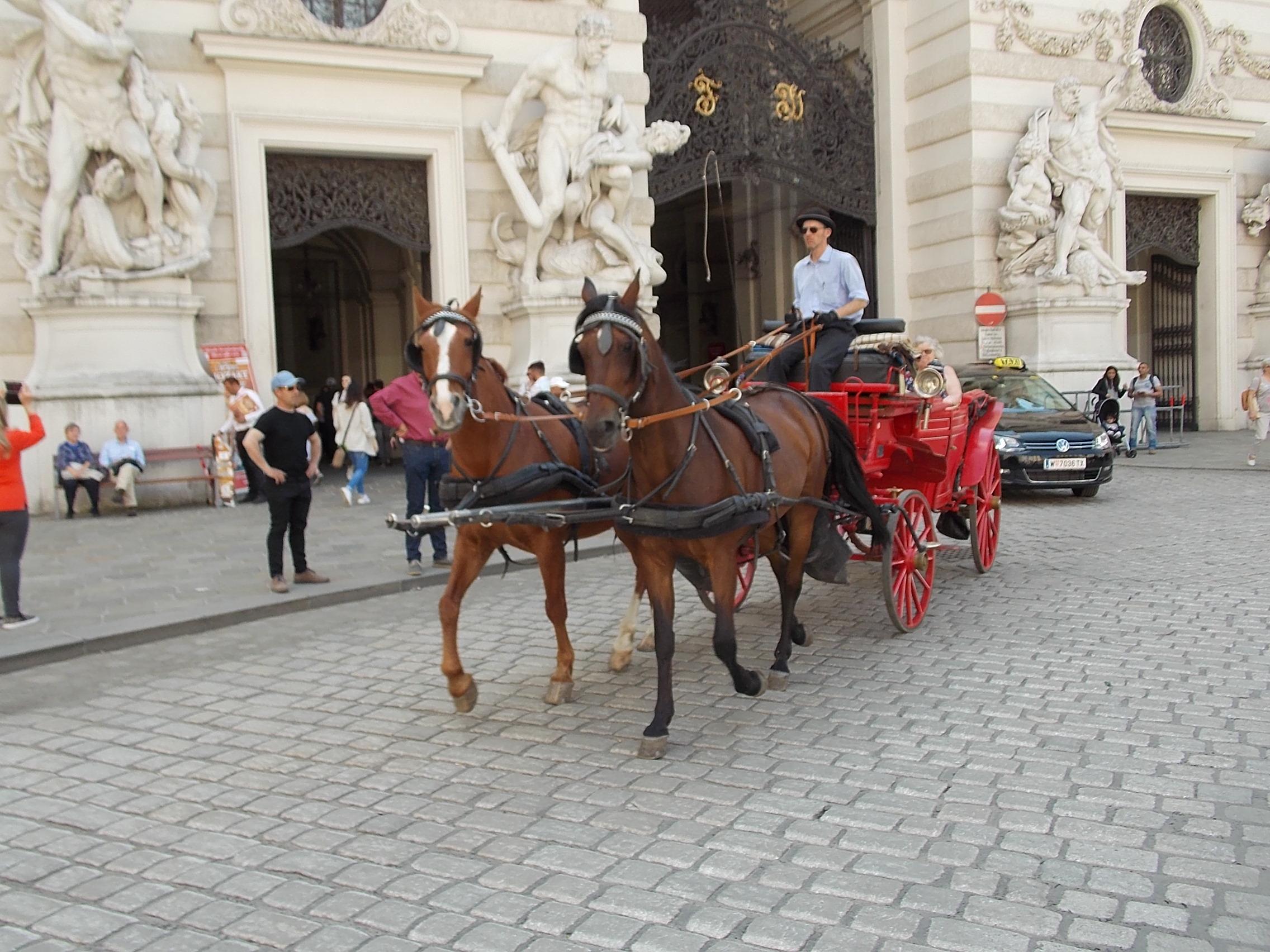 Wien Fiaker