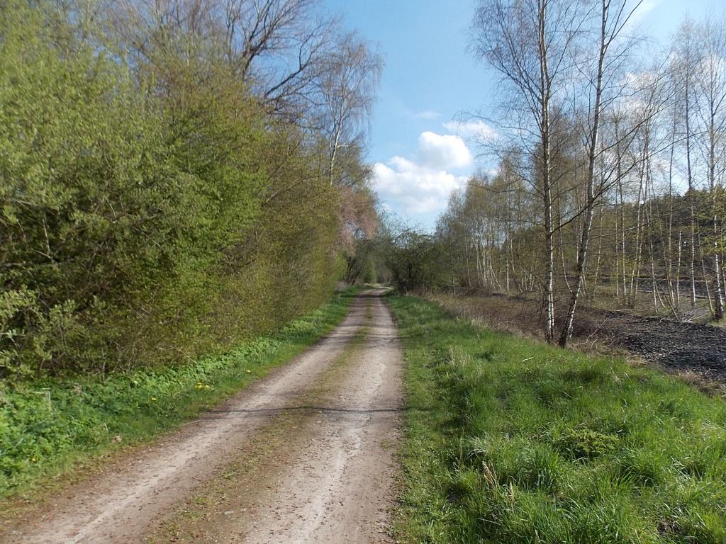 Kiel Weg