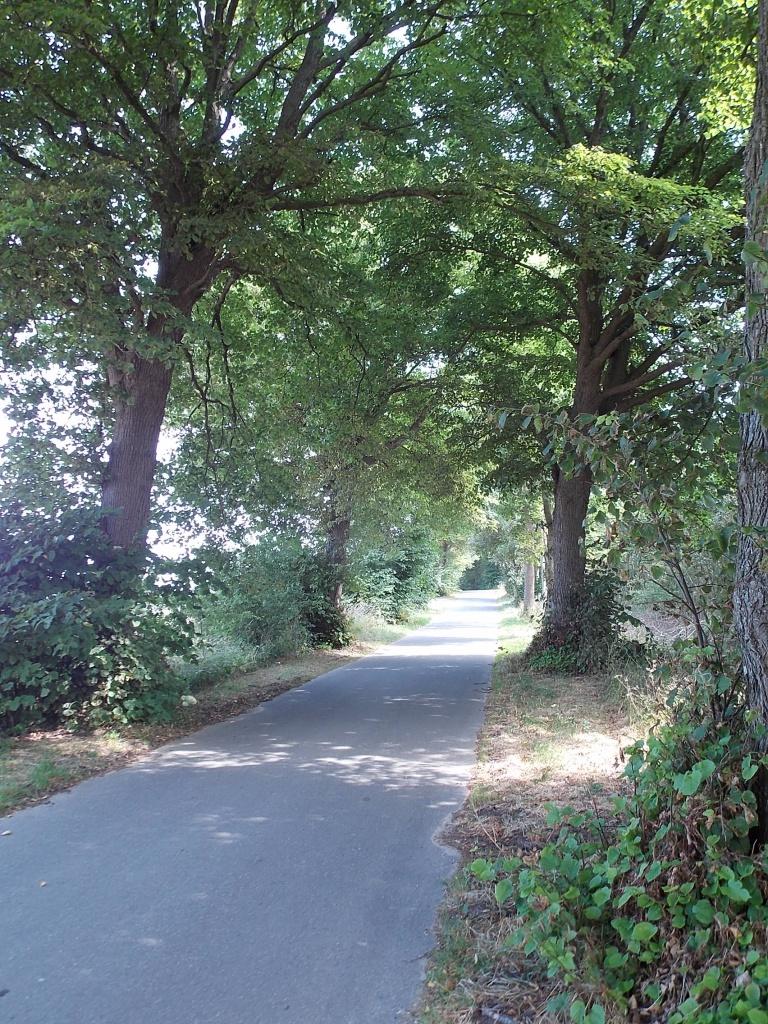 Lütjenburger Weg