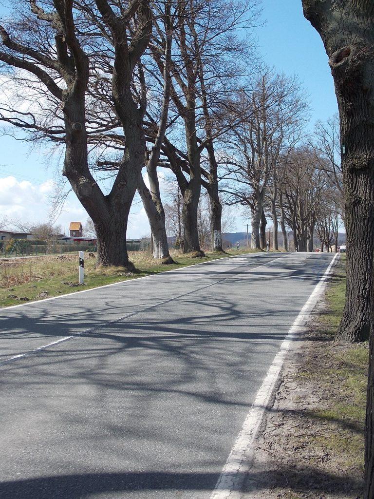 Sellin Bundesstraße 196