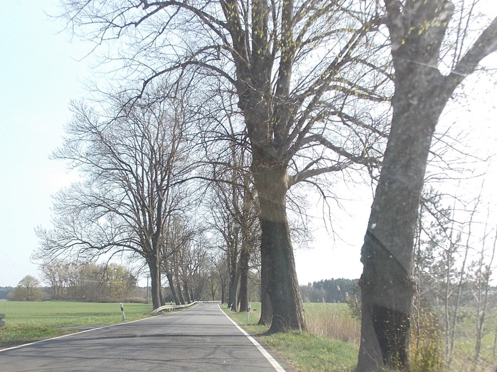 Wesenberg - Rheinsberg