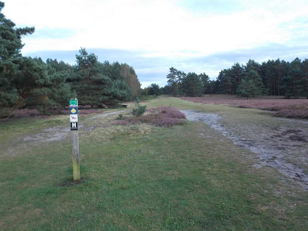 Misselhorner Heide