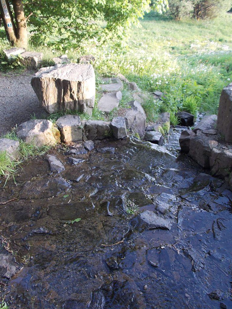 Wasserkuppe Fulda-Quelle