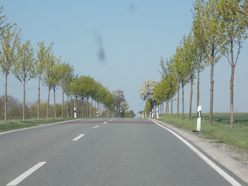 Alsleben - Staßfurt L 72