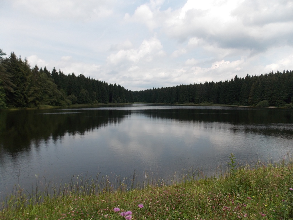 Oberer Nassenwieser Teich