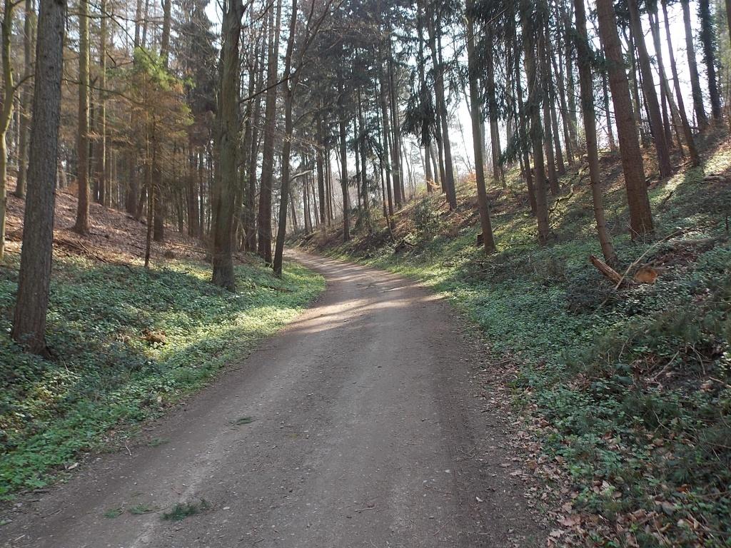 Tesperhude Lauenburger Fußsteig