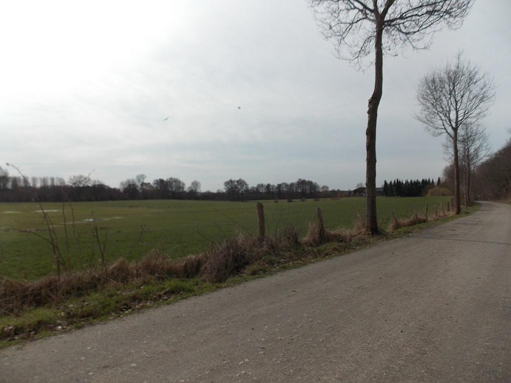 Sieversdorfer Weg