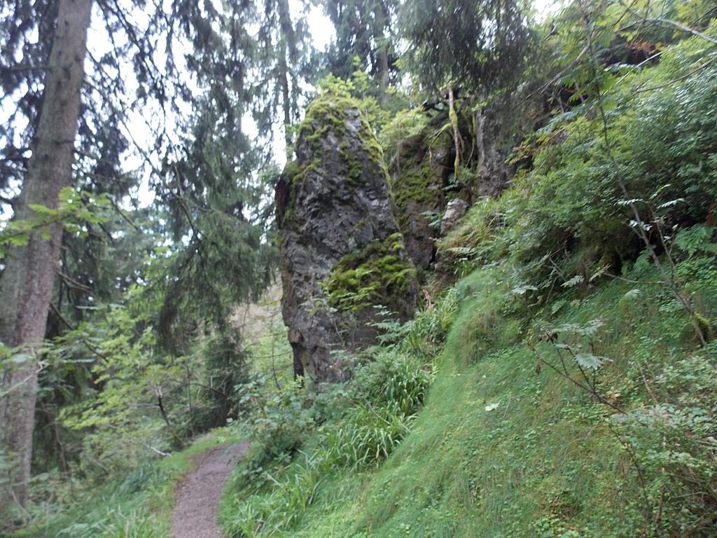 Magdeburger Weg Dehnenkopf Harz