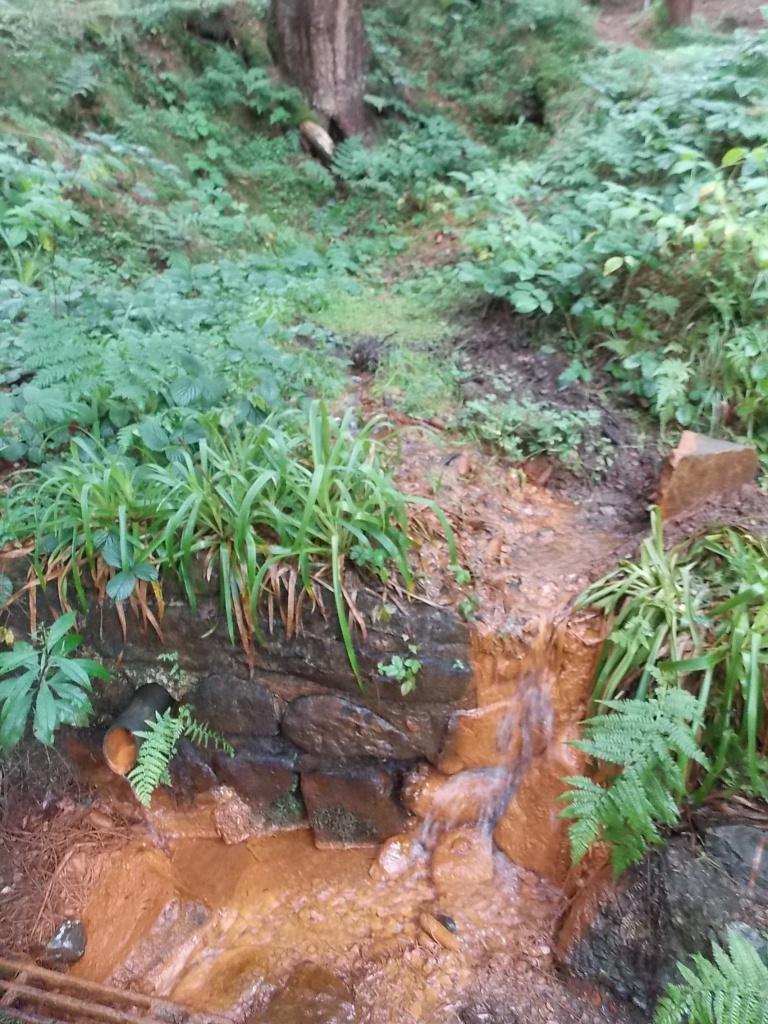 Quelle Harz