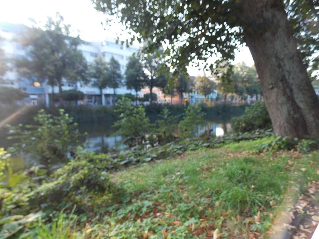 Rendsburg Gewässer