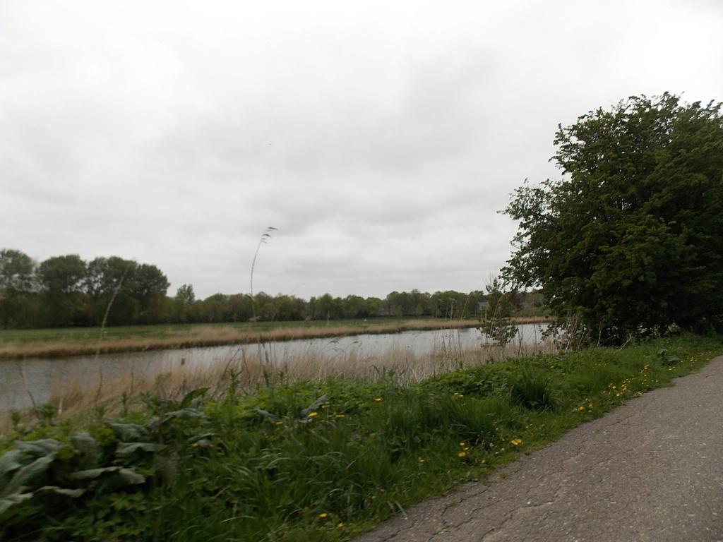 Rendsburg Eider