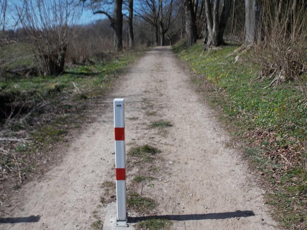 W3 Brekendorfer Forst Lehmberg