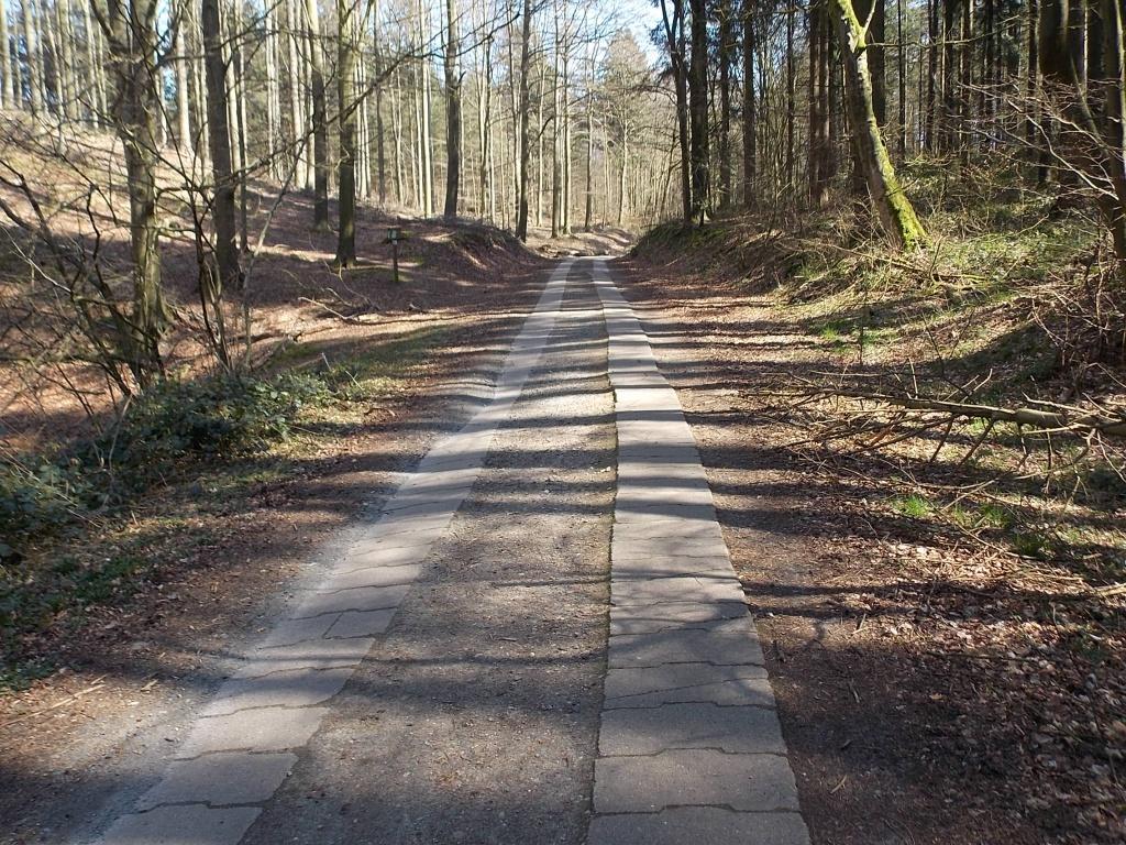 W3 Brekendorfer Forst Lehmberger Weg