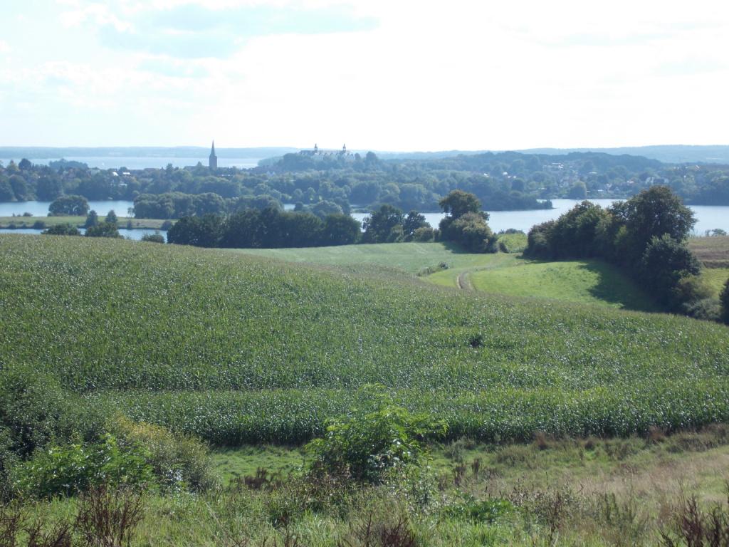 Preetz Plön Plön mit Großen Plöner See im Hintergrund